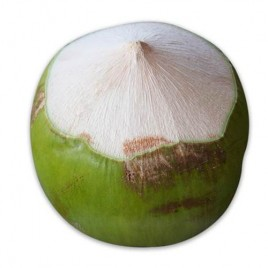 Coco Verde – 1 ud